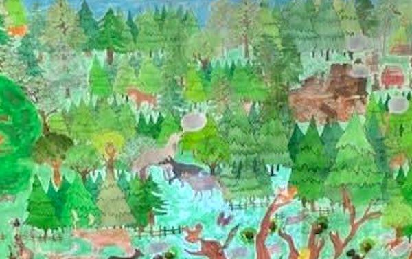 """""""Il mondo visto con gli occhi di un albero"""", la IV C supera la selezione regionale"""