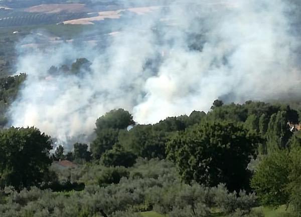 Arrestato il responsabile degli incendi boschivi, è un pensionato di Guardea