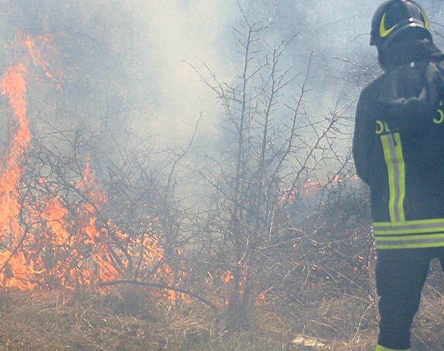 Ancora incendi di sterpaglie, in campo la squadra boschiva dei vigili del fuoco