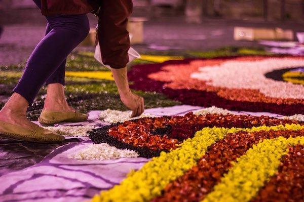 """""""Le Quattro Stagioni"""" ispirano le infiorate della quinta Festa del Fiore"""