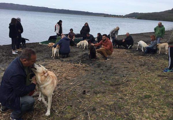 """Invasione a 4 zampe per il V Raduno Nazionale di """"Labrador si nasce"""""""
