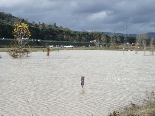 Vertice in Provincia per la situazione del Parco Urbano del Paglia dopo le esondazioni del fiume