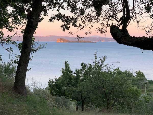 Al via il processo per la costituzione del Biodistretto del Lago di Bolsena