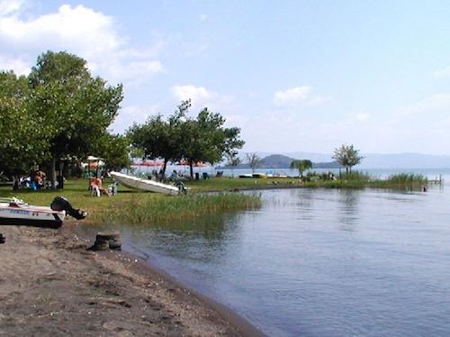 """""""Lago nostro, futuro nostro"""". Proiezione al Museo della Navigazione delle Acque Interne"""