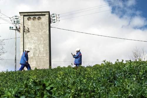 Lavori Enel a Corbara e Castel Viscardo, si rinnovano le linee aeree di bassa tensione