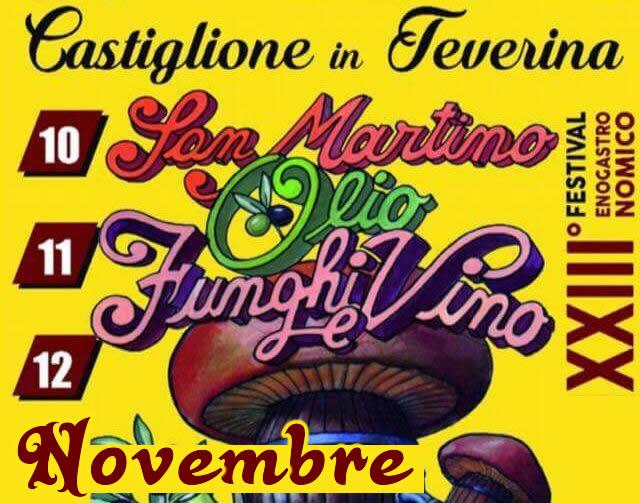 """Dal 10 al 12 novembre tutti a """"San Martino, Olio, Funghi e Vino"""""""