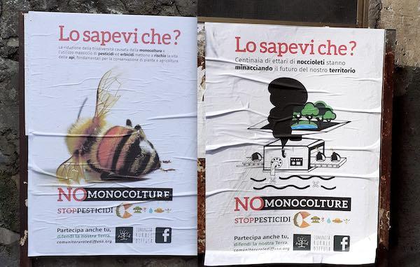"""""""Lo sapevi che?"""". Campagna di affissioni sui noccioleti in 9 comuni dell'Orvietano"""