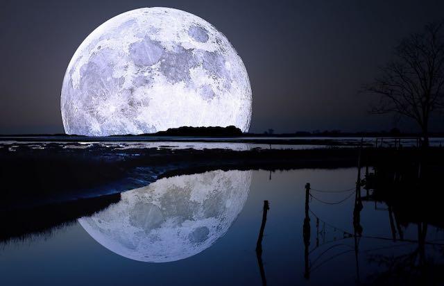 Notte amara senza luna