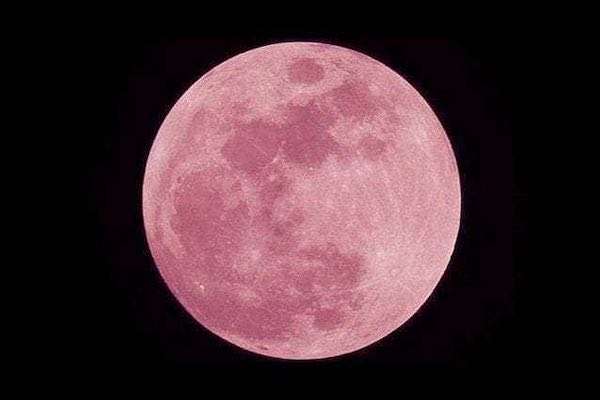 Luna rosa, spettacolo celeste. Tre giorni, pieni di illusione