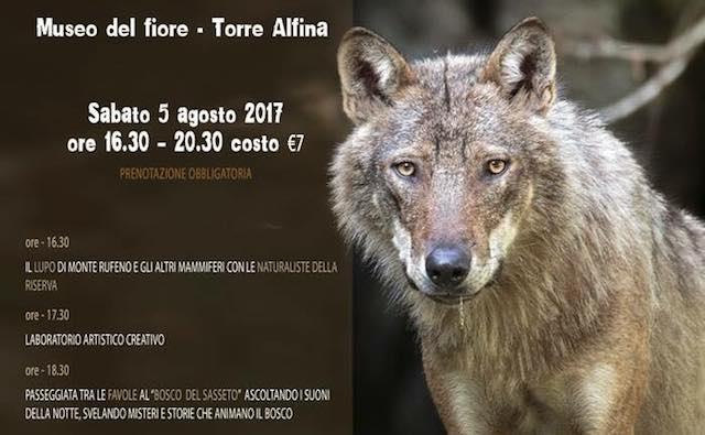 """""""Il lupo nel bosco incantato"""" al Museo Naturalistico del Fiore"""
