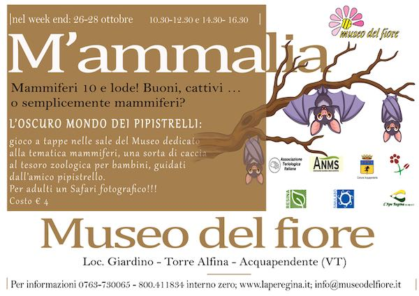 """""""M'ammalia"""" al Museo del Fiore per conoscere il mondo dei pistrelli"""