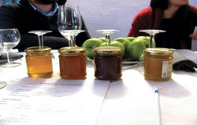 """""""Honey and Tasting 2017"""". Corso introduttivo all'analisi sensoriale del miele"""