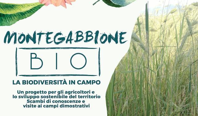 """""""Montegabbione Bio"""". Biodiversità in campo per un nuovo modello di sviluppo sostenibile"""
