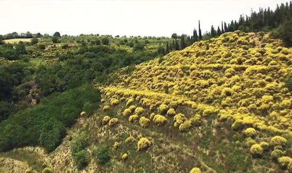 Monte Peglia, un valore aggiunto per la ripartenza di tutta l'Umbria