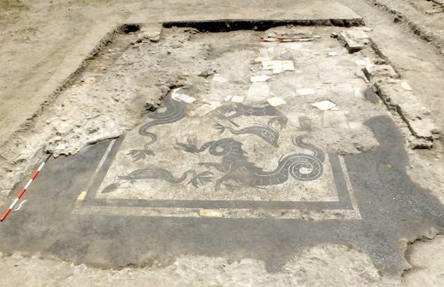 Dagli scavi di Campo della Fiera affiora un mosaico con raffigurazioni marine