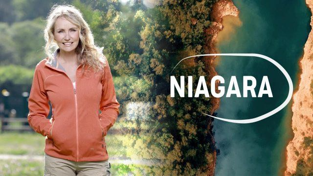 """Televisori sintonizzati su Raidue. Va in onda """"Niagara"""" con il Bosco del Sasseto"""