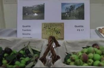"""Da San Venanzo """"I novelli d'autunno"""". Un video di Roberto Gonnellini"""