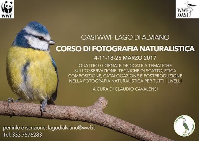 Corso di Fotografia Naturalistica all'Oasi WWF Lago di Alviano