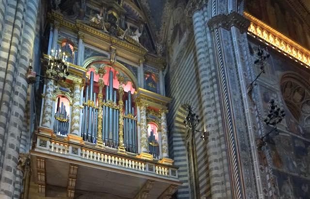 Concerto d'organo ad ingresso libero in Cattedrale