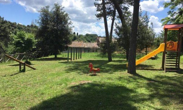 Buche al Parco Pineta, chiuso in via precauzionale con ordinanza del sindaco