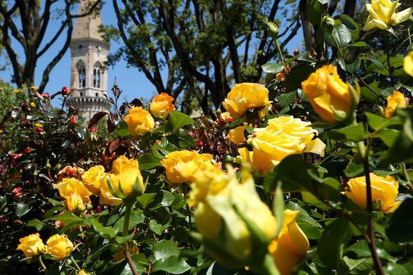 """I Giardini del Frontone tornano a fiorire con """"Perugia Flower Show"""""""