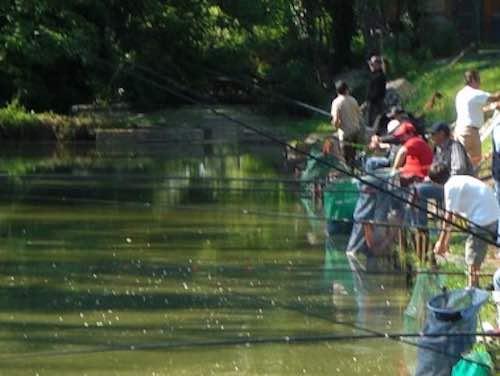 Torna l'attività di sensibilizzazione Enel per la pesca in sicurezza