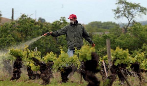 ISPRA, rapporto 2020 sui pesticidi nelle acque