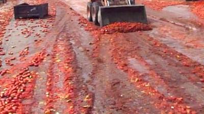 Un tir perde il carico e le cassette di pomodori invadono l'A1