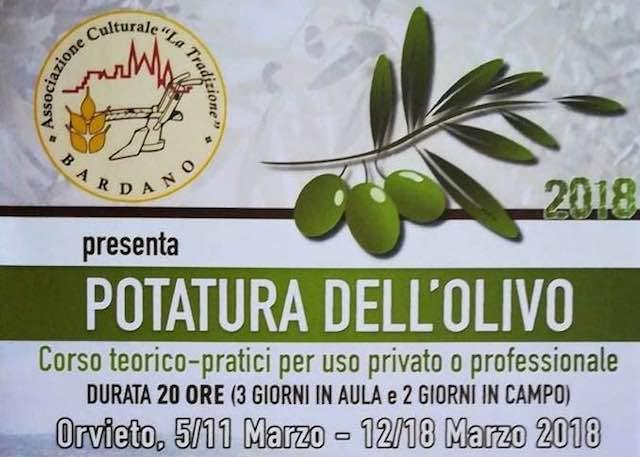 """Corso di Potatura dell'Olivo con l'Associazione Culturale """"La Tradizione"""" di Bardano"""