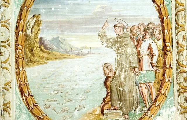 """""""Gli Ordini mendicanti e predicatori nella Diocesi di Orvieto-Todi: la povertà come ricchezza"""""""