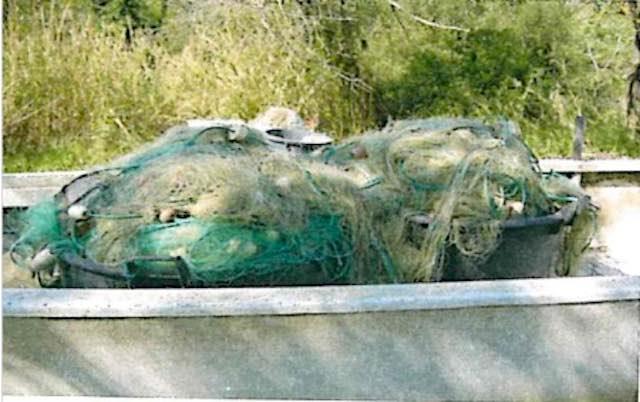 Pesca illegale al lago di Corbara. Liberati 5 quintali di pesci, sequestrati 2mila metri di reti da pesca