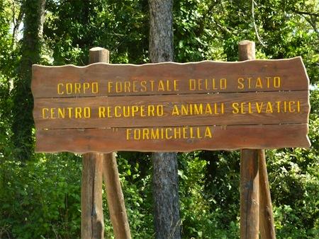 Sul Monte Peglia, il centro di accoglienza più grande d'Italia per gli animali esotici e selvatici sequestrati
