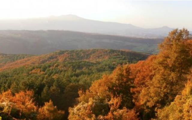 Carta Europea del Turismo Sostenibile alla Riserva Naturale Monte Rufeno