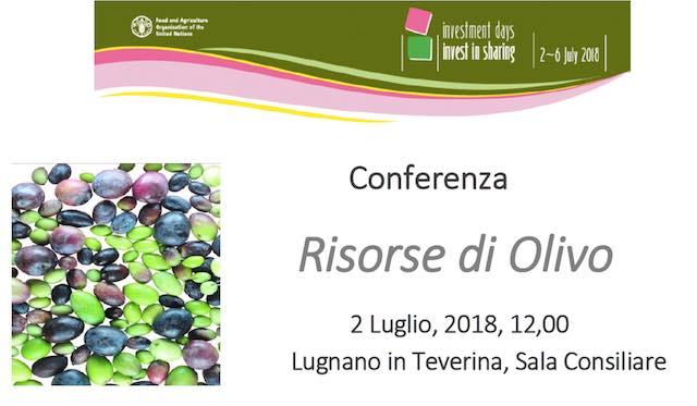 """Convegno """"Risorse di Olivo"""". FAO in visita alla Collezione Mondiale degli Ulivi"""