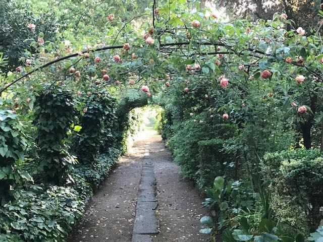 Apre il giardino segreto di palazzo sanvitani. visite fai per