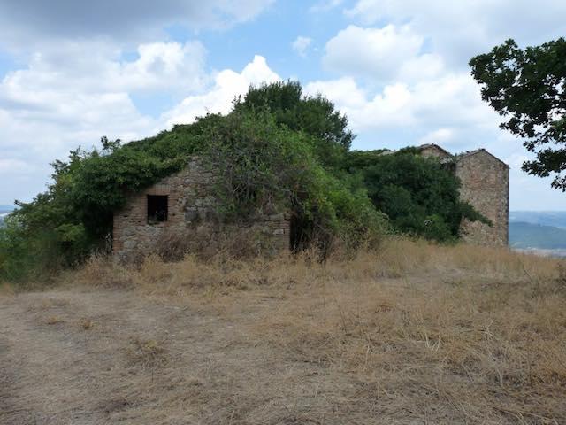 La Polisportiva cammina nella storia. Escursione ai resti di Meana e Villa Cahen