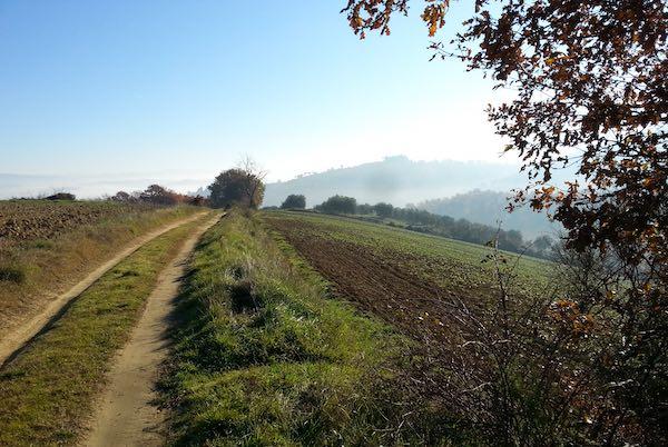 Quarta escursione tra i poderi del Peglia. Con il CAI, nel cuore della biodiversità