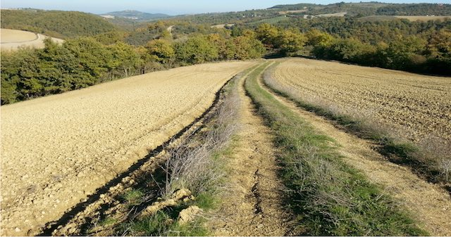 Si presenta la Rete Sentieristica Comunale, in arrivo la Passeggiata Ecologica