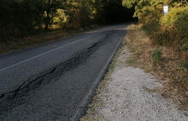 """SP 31, strada colabrodo e viabilità compromessa. Lega: """"La Provincia faccia manutenzione"""""""