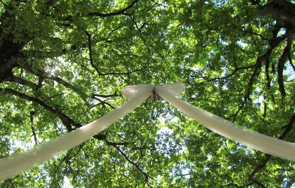 Sposalizio dell'Albero, tra i sentieri del bosco e i meandri dell'anima