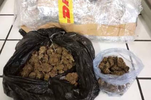 Mezzo chilo di marijuana nel garage di casa, nei guai due giovani
