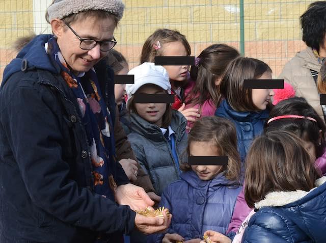 Messo a dimora l'abete di Susanna Tamaro nella scuola di Sferracavallo