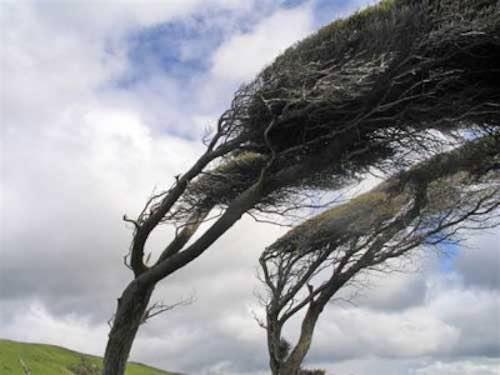 La stanza del vento