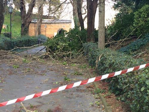 Danni causati dal vento, sopralluogo della Protezione Civile per lo stato d'emergenza