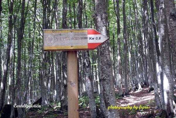 Da Abbadia San Salvatore alla vetta del Monte Amiata