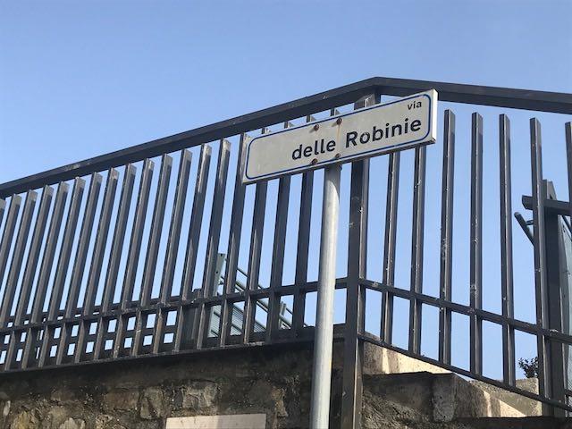 """Rendere Via delle Robinie sicura. Olimpieri (IeT): """"Interventi non più rimandabili"""""""