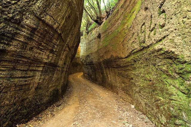 Visita guidata con i Custodi delle Vie Cave