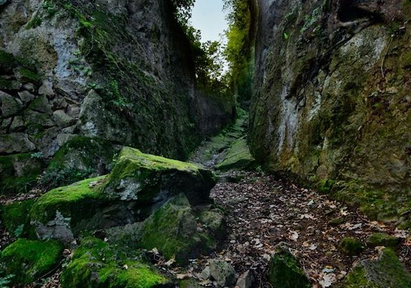 """""""Pitigliano Walks & Trekking"""", escursioni da luglio a ottobre diurne e notturne"""