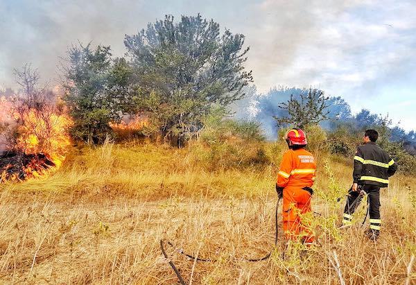 Vasto incendio di sterpaglie nei pressi dell'Area di Servizio