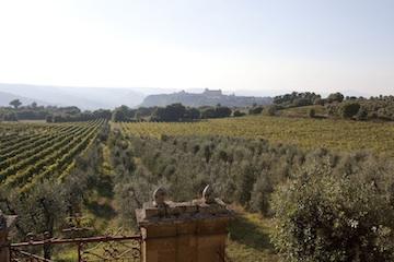 """Successo dell'iniziativa organizzata da Fisar e Slow Food Orvieto """"Il territorio, la vigna, il vino"""""""